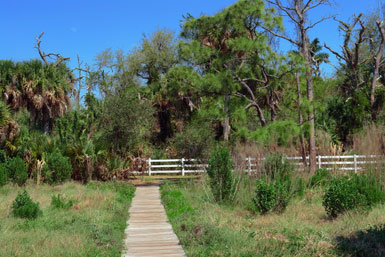 Path to Burial Mound