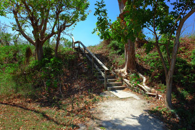 Stairway to Top of Brown's Mound