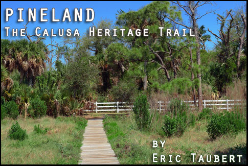 Pineland on Pine Island - Calusa Heritage Trail